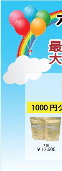 ボノラート2袋+次回使える1000円クーポン付き