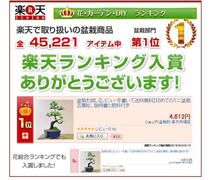 盆栽ランキング入賞