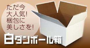 白段ボール箱
