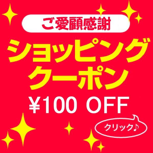 ショッピングクーポン100円 OFF