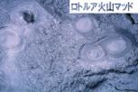このロトルア火山マッドのイオンエネルギーが効果的に作用し、シミやクスミを洗い流してくれます。