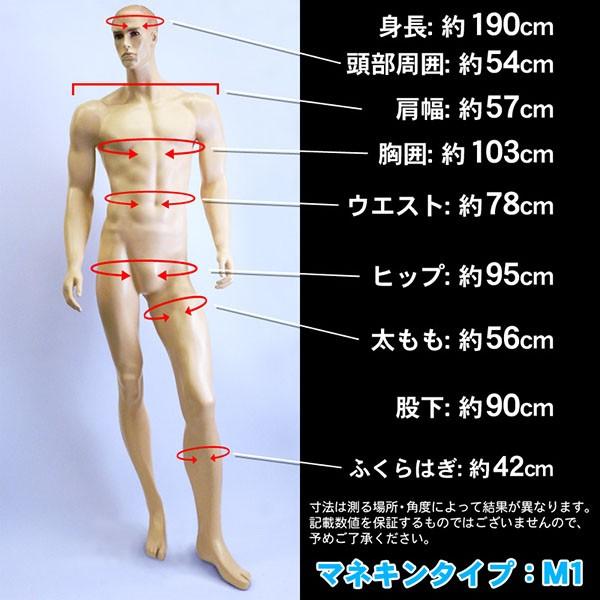 男性用マネキン Type-M1