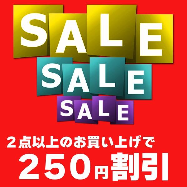 ★全商品対象クーポン★ 2点以上お買い上げで250円割引