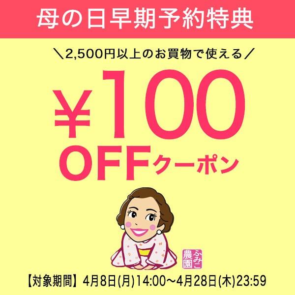 \母の日早期予約特典/全品で使える100円OFFクーポン!