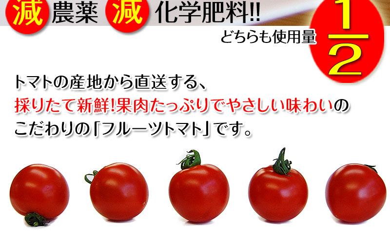トマトの産地から採れたてを直送させて頂きます。