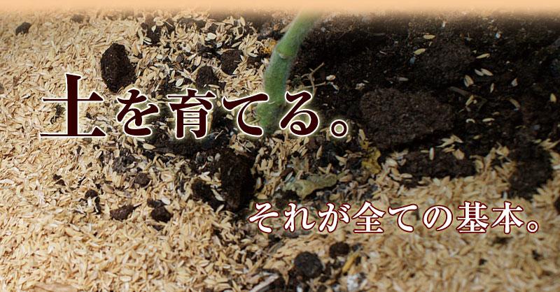 熟成された土からは、化学肥料を使わなくても最高に美味しい野菜が出来る!