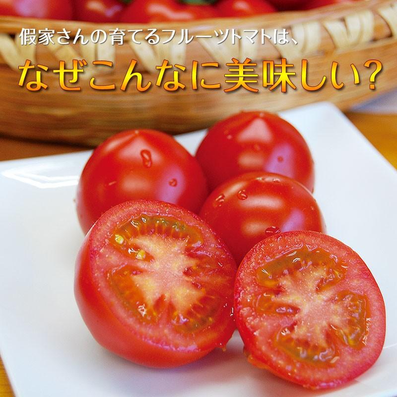 このトマト、美味しい!もう一つ食べたい。そう思ってしまうお味です。