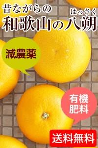 無添加 紀州あんぽ柿