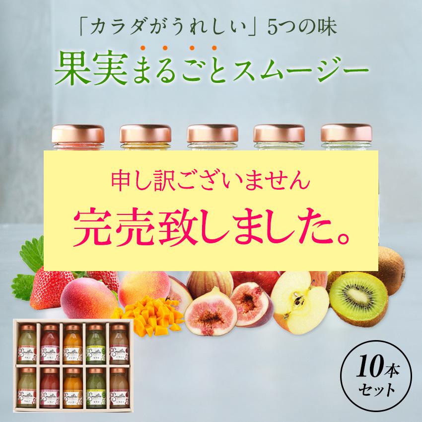フルーツスムージー10本