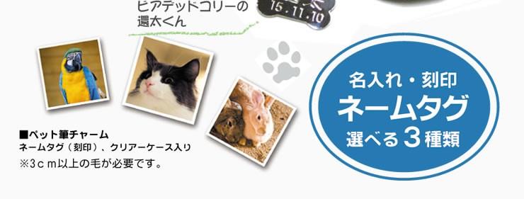 【名入れ】ペット筆チャーム・ネームタグ付き【熊野筆】
