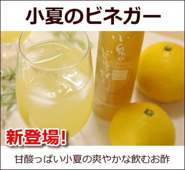 甘酸っぱい飲むお酢【小夏ビネガー】