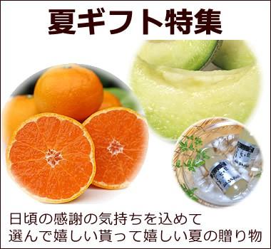 白木果樹園厳選【夏ギフト】