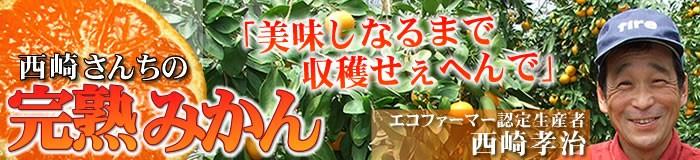 西崎さんちの温州みかん・有田みかん