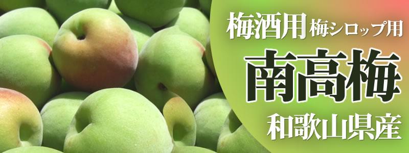 南高梅 梅酒  梅シロップ用 和歌山県産