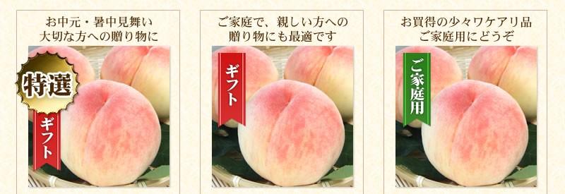 特選ギフト・ギフト・お買い得商品一覧