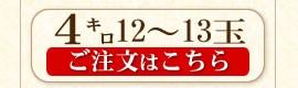 ギフト4キロ12〜13玉
