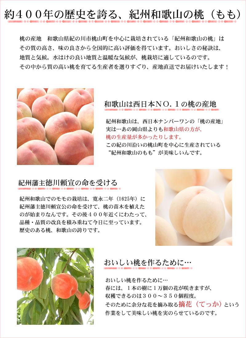 約400年の歴史を誇る紀州和歌山の桃(もも)
