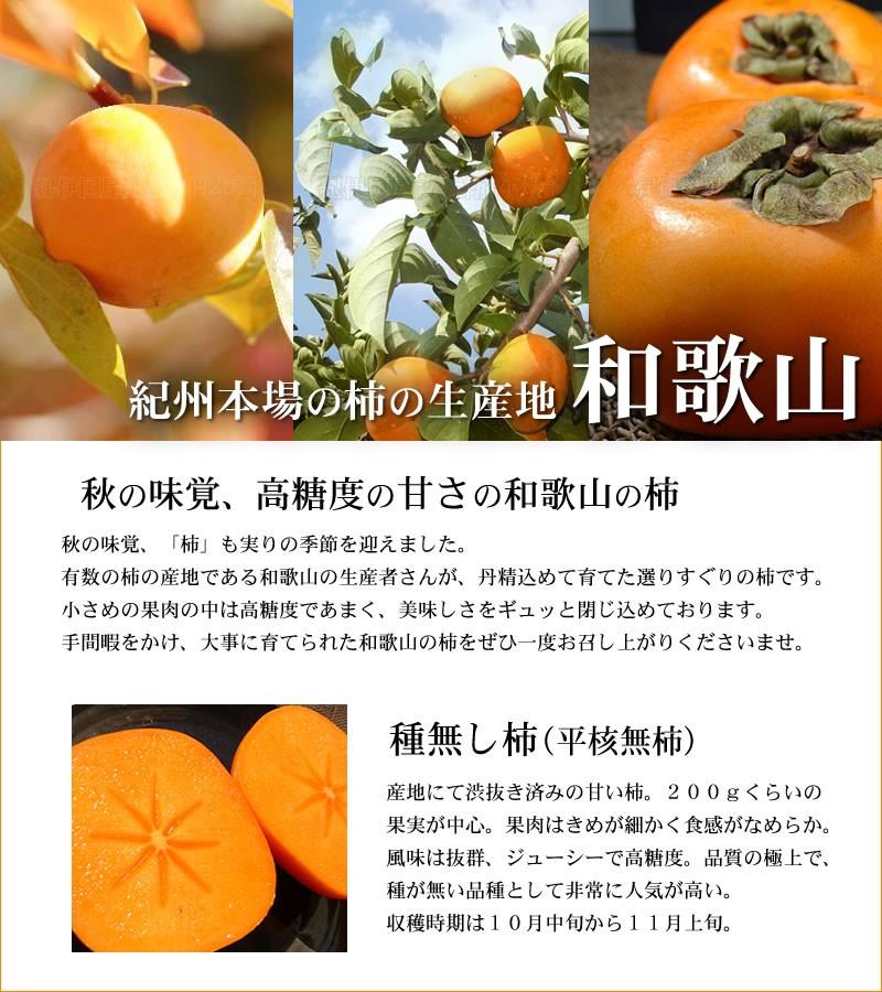 紀州本場の柿の生産地 和歌山