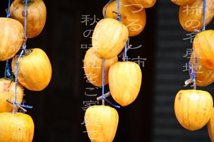 つるし柿用・干し柿用 渋柿 加工用・和歌山県かつらぎ町産