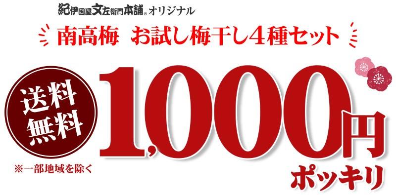 1000円送料無料