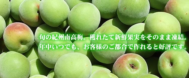 とれたての新鮮果実をそのまんま凍結。冷凍青梅・紀州和歌山産