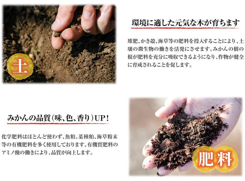 清見オレンジ土肥料
