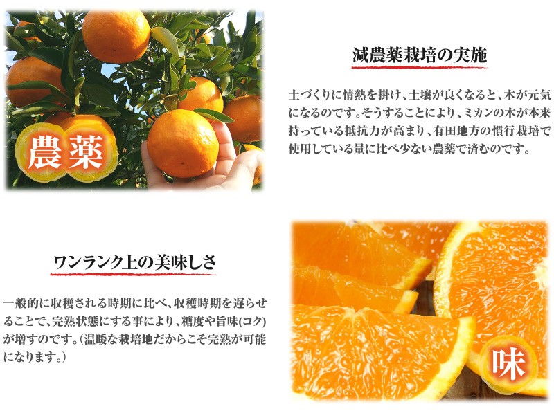 清見オレンジ農薬味
