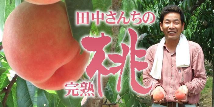 田中さんちの大きなわかやまの桃