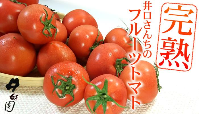 井口さんちのプレミアム「フルーツトマト」