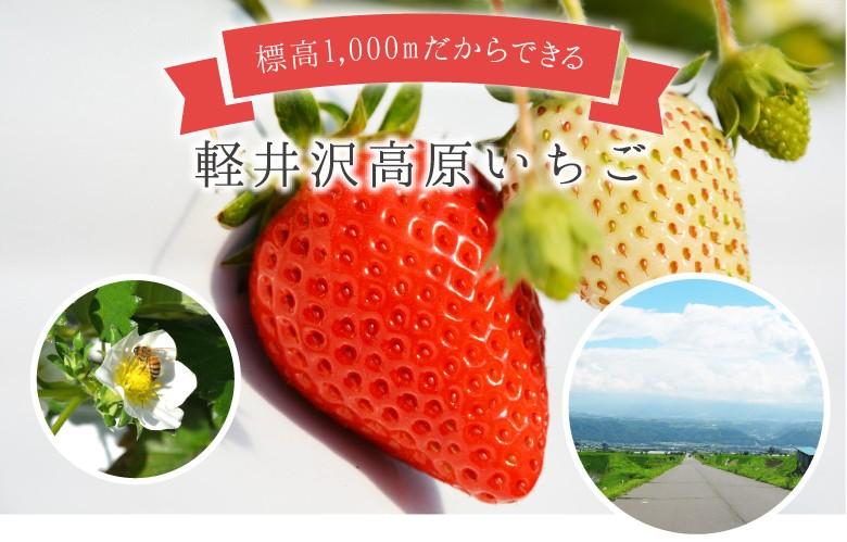軽井沢高原いちご 冬いちごブレンドジャム250g