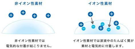 フォーカスデイリーズ商品説明2