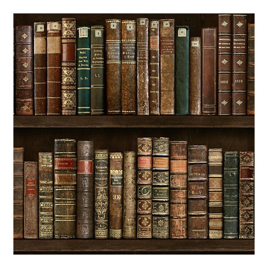 壁紙 張り替え 自分で Diy クロス おしゃれ 本棚 輸入壁紙 Old Bookshelf オールドブックシェルフ 紙製 Kdid008 ビニールカーテンのcレンジャー 通販 Yahoo ショッピング