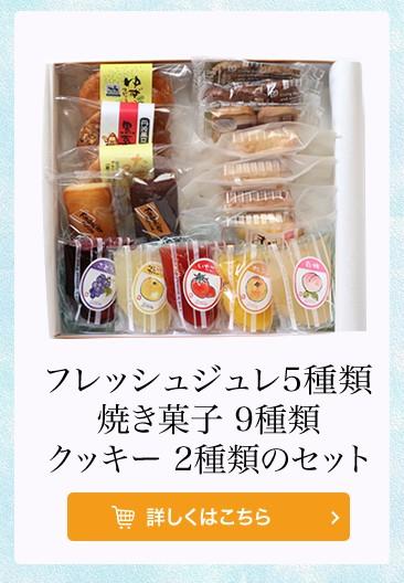 フレッシュジュレ5種類、焼菓子9種類、クッキー2種類のセット