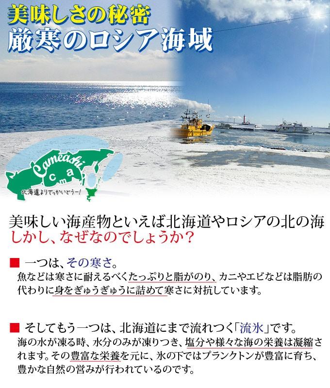 美味しい海産物いえば極寒の北の海。しかし、なぜなのでしょうか?一つは、その寒さ。魚などは寒さに耐えるべくたっぷりと脂がのり、カニやエビなどは脂肪の代わりに身をぎゅうぎゅうに詰めて寒さに対抗しています。そしてもう一つは、冬には北海道まで流れてくる「流氷」です。海の水が凍る時、水分のみが凍りつき、塩分や様々な海の栄養は凝縮されます。その豊富な栄養を元に、氷の下ではプランクトンが豊富に育ち、豊かな自然の営みが行われているのです。