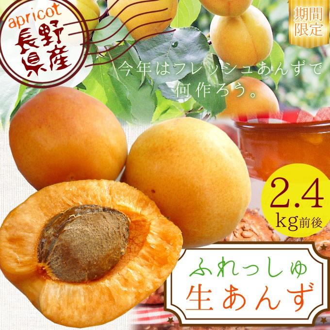 日本一のあんずの里から、日本一のあんずをお届けいたします!手作りアプリコットジャムや、シロップ漬けに♪レシピも同梱いたします!【生あんず700g×4パック】長野県産生あんずたっぷりお届けいたしまーす!手作りジャム、砂糖漬けなどに♪