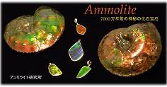 アンモライト[ammolite]