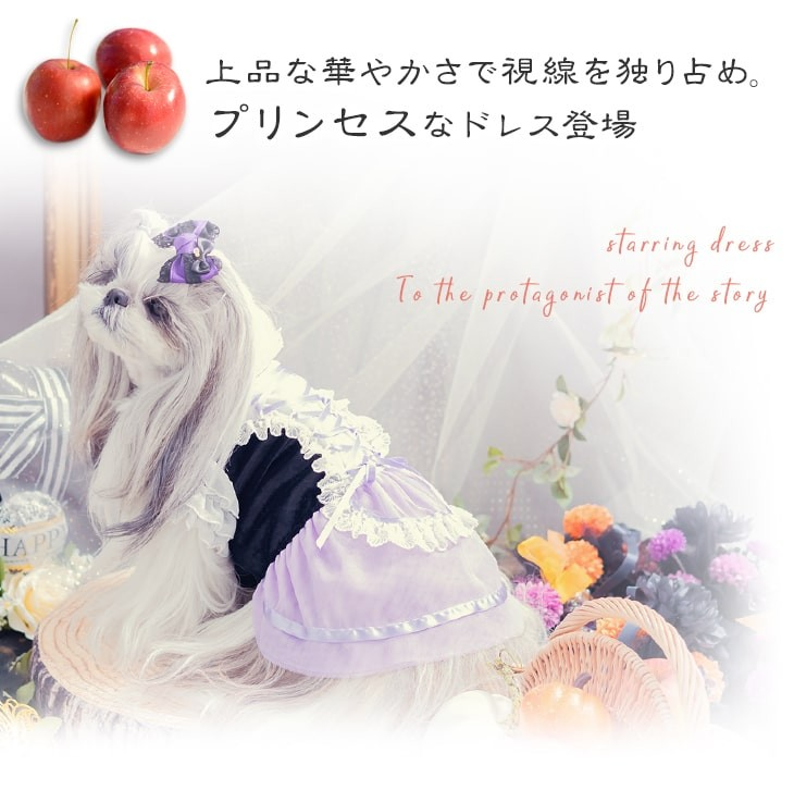 プリンセス系チュールドレス03