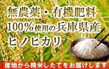 無農薬・有機肥料の兵庫県の白米、玄米