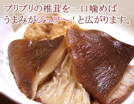 プリプリの椎茸を一口噛めば、うまみがジュワ〜と広がります。