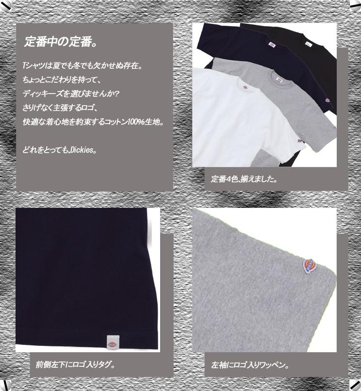 Dickies 半袖TシャツFB463U