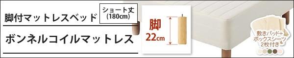 ボンネルコイル:脚22cmタイプ