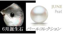 パール 真珠 コレクション|6月