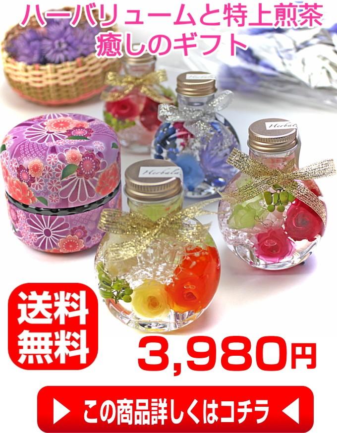 女性一番人気!日本一富士山の特上煎茶セット50gなつめ缶入れ