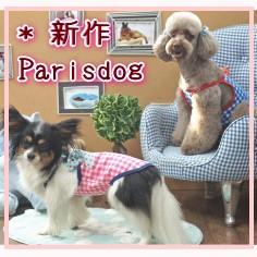 Parisdog new