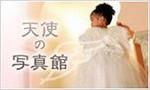 天使の羽 写真