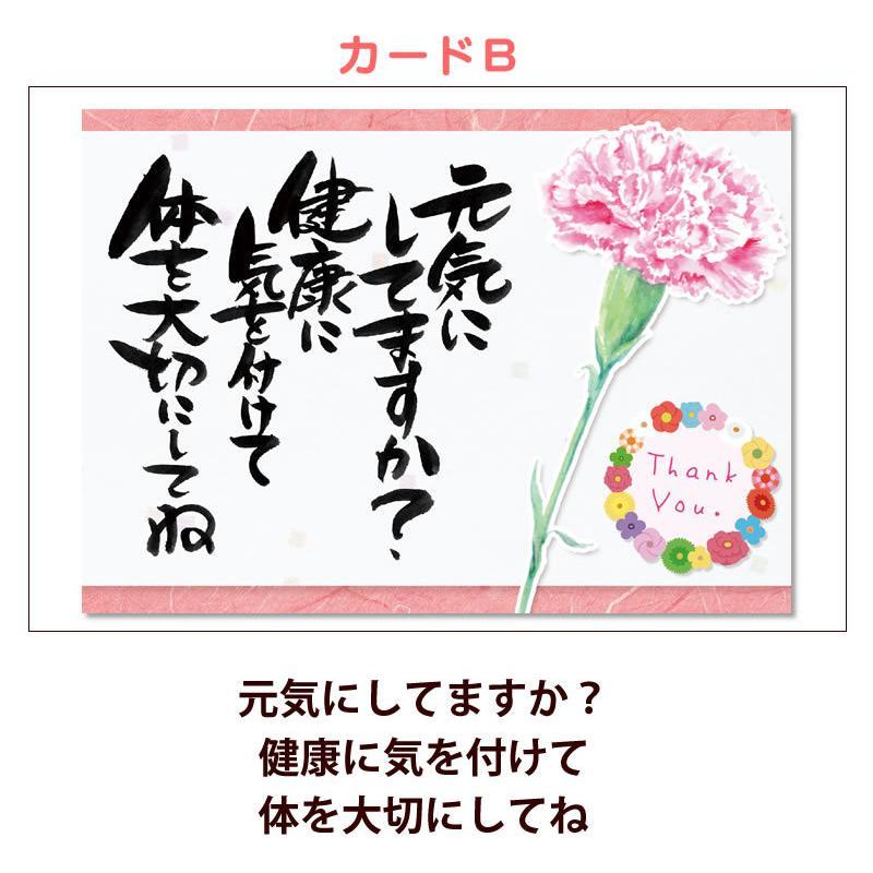 母の日 カーネーション 花 2021 プレゼント 花とスイーツ 早割 鉢植え 5号鉢 スイーツ 和菓子 栗きんとん 中津川 送料無料 ギフト ちこり村|chicory|23