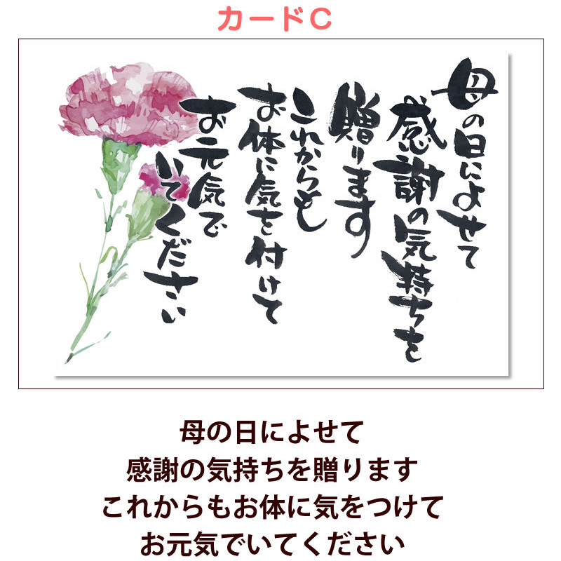 母の日 カーネーション 花 2021 プレゼント 花とスイーツ 早割 鉢植え 5号鉢 スイーツ 和菓子 栗きんとん 中津川 送料無料 ギフト ちこり村|chicory|24