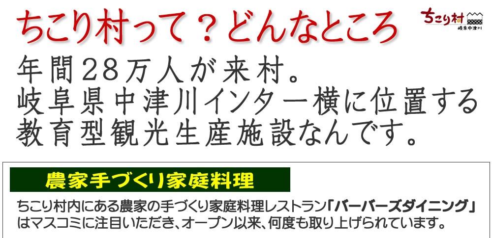 【ちこり村ってどんなところ?】岐阜県中津川市の中津川インターすぐ横、教育型観光生産施設です。