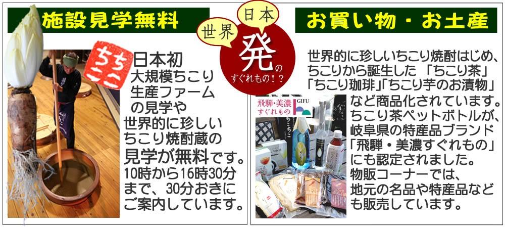 日本初の大規模ちこり生産ファームや世界初の焼酎蔵の見学が無料!