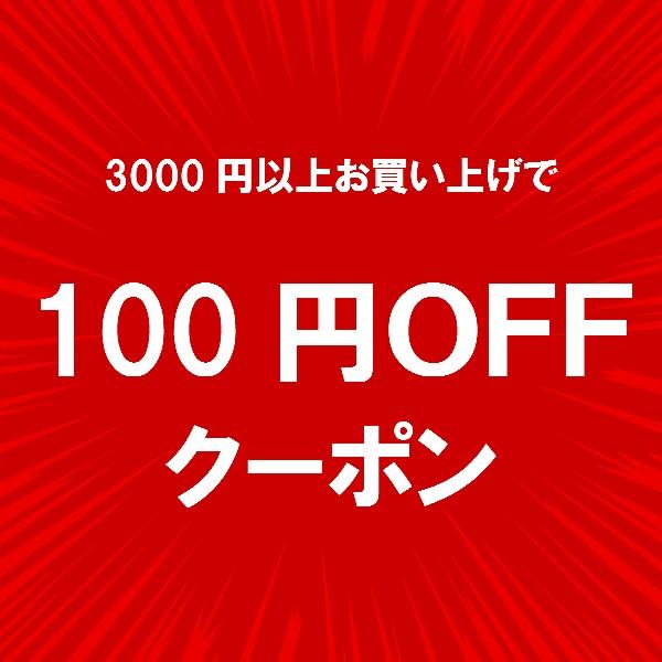 【チトセスポーツ】 ★100円OFFクーポン★ 店内全品対象!